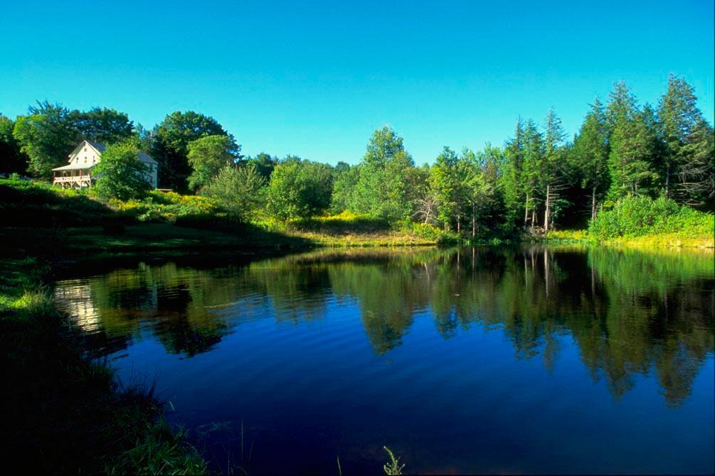 Фотообои Дом у озера