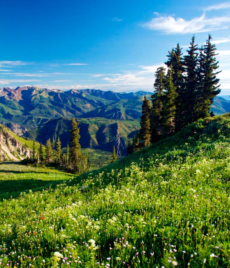 Фотообои Даль, горы