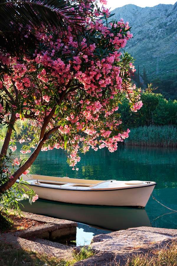 Фотообои Лодка, берег, цветы