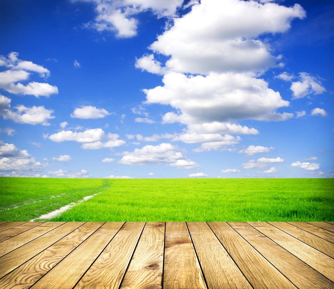 Фотообои небо и трава