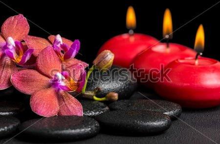 Фотообои Орхидеи, свечи, камни