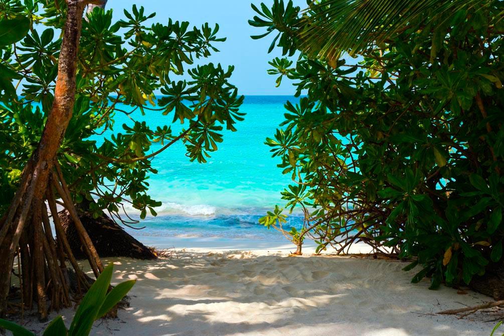 Фотообои Песок, пляж