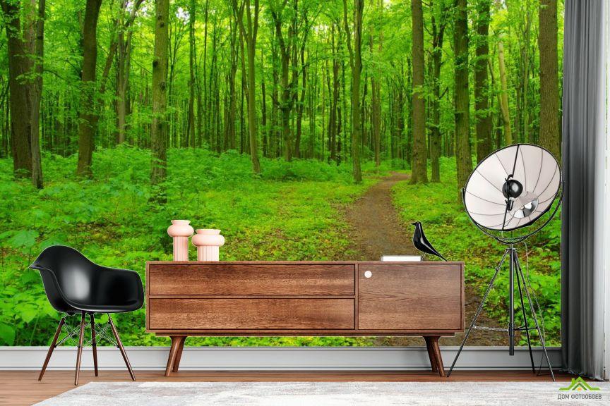 Фотообои ярко-зеленый лес