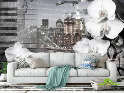 Серые  Фотообои Орхидея на фоне города