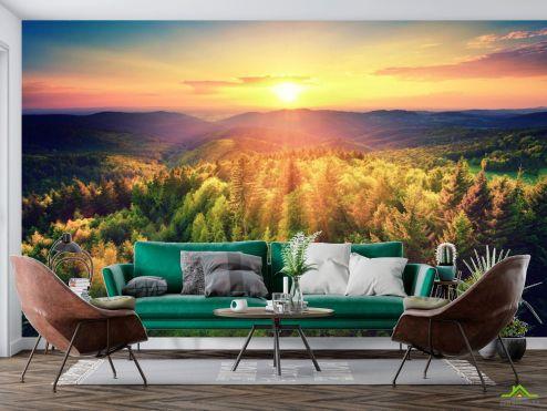 по выгодной цене Фотообои закат над сосновым лесом