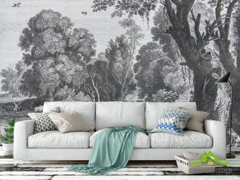 Эксклюзивные фотообои по выгодной цене Фотообои Деревья гравюра