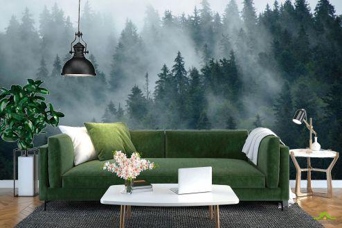Природа Фотообои Лес в тумане