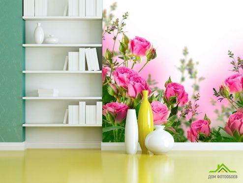 обои Цветы Фотообои Роза чайная