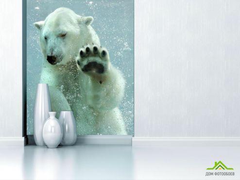 обои Животные Фотообои белый медведь под водой