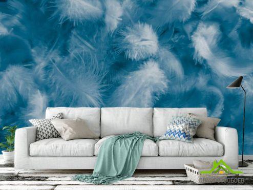перья Фотообои Синие пёрышки