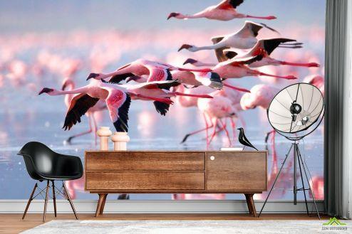 Птицы  Фотообои Улетающие фламинго