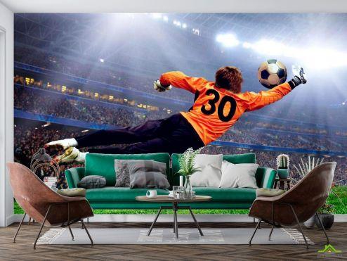 Спорт Фотообои Вратарь ловит мяч купить