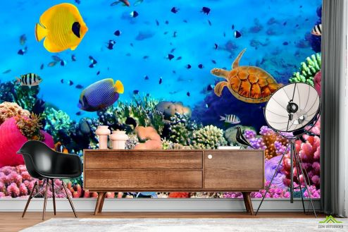 Море Фотообои Мир подводный. Красоты.