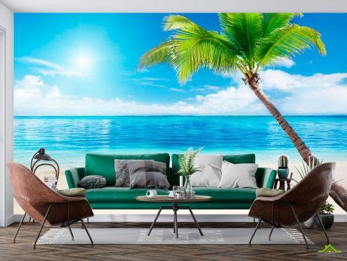 Море Фотообои Пляж, пальма, штиль