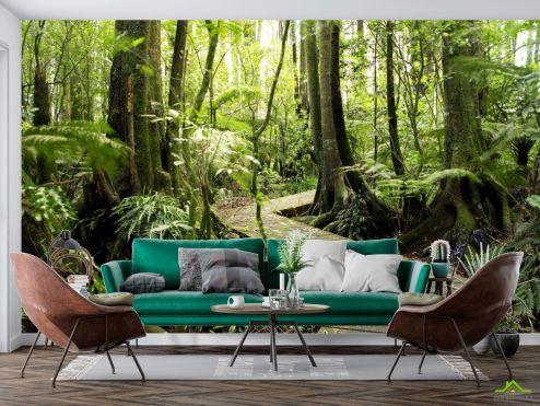 Природа Фотообои деревянная дорожка в лесу купить