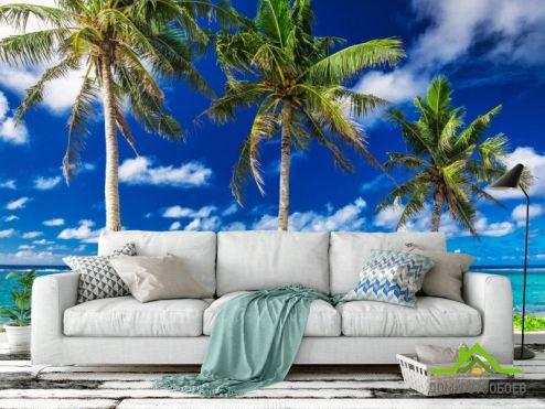 Фотообои Море по выгодной цене Фотообои Три пальмы у моря