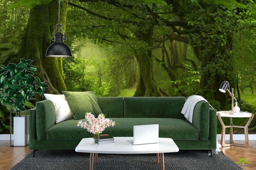 Фотообои зеленый лес