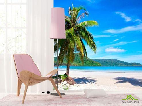 Пальмы Фотообои Пальма на пляже