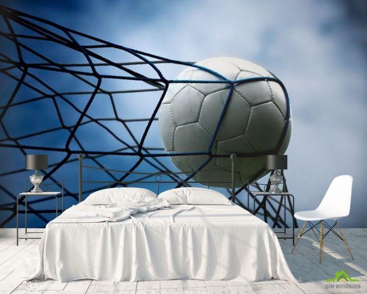 Фотообои Мяч в сетке