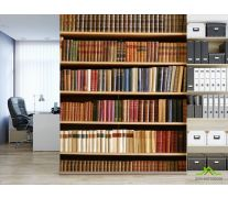 Фотообои Книжные полки