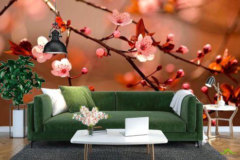 Вишня Фотообои Дерево вишни цветет