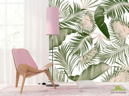 тропические листья Фотообои Пальмовые листья и банан