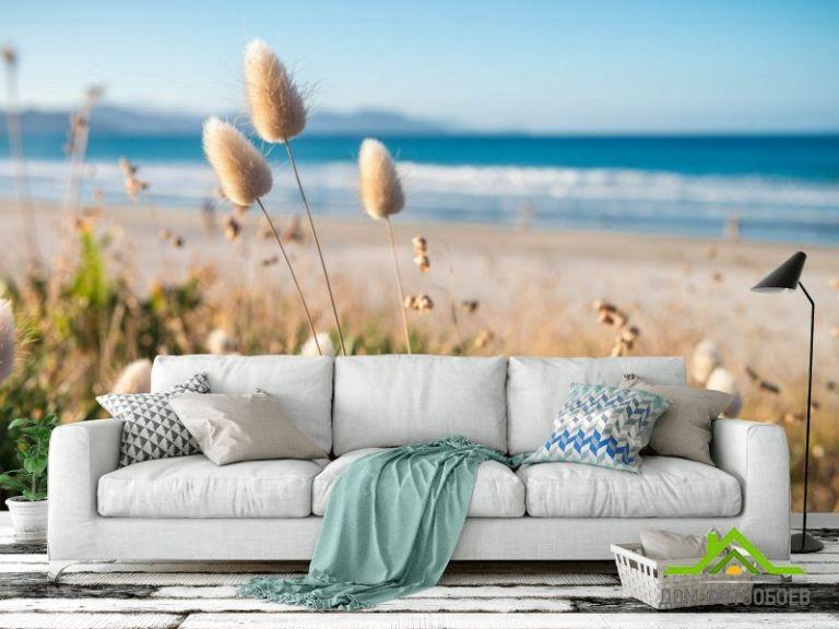 Фотообои Сухоцветы у моря