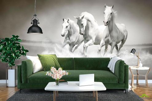 Лошади Фотообои Белые кони