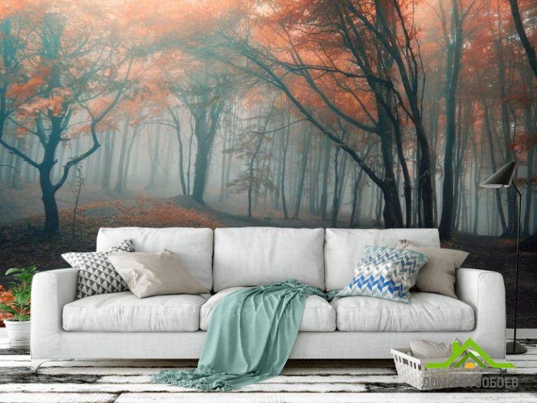 Фотообои осенний лес