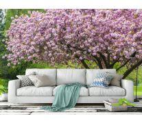 Фотообои дерево в цвете