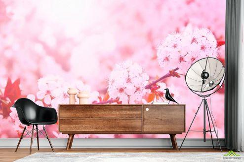 Вишня Фотообои Розовый вишневый цвет