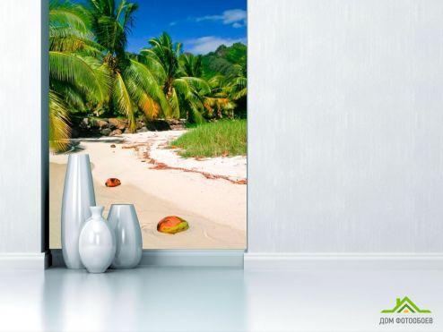 обои Пляж Фотообои Кокосы на пляже
