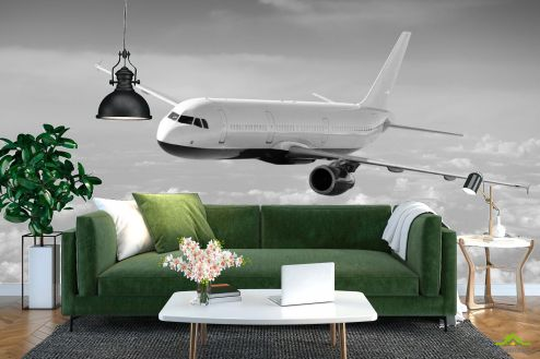 Черно-белые  Фотообои самолет