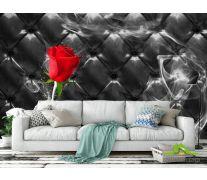 Фотообои Красная роза на фоне