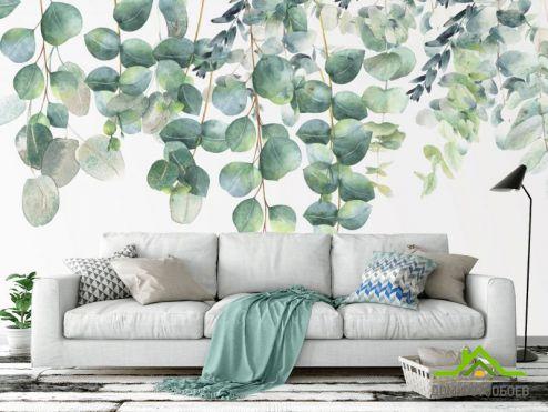 Каталог фотообоев по выгодной цене Фотообои Эвкалиптовые листья