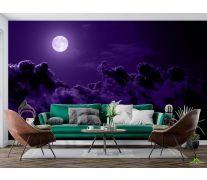 Фотообои яркая луна на темном небе