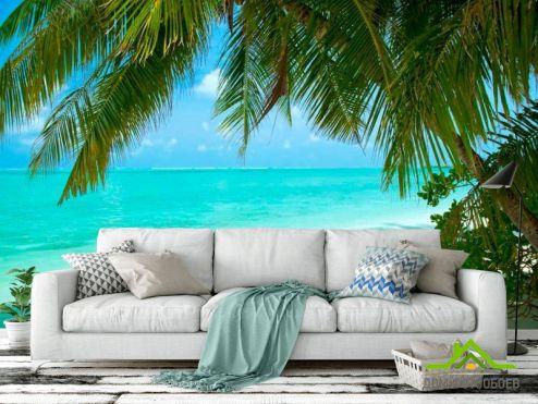 Пляж Фотообои Тень от пальмовых листьев