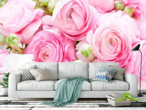 обои Цветы Фотообои Букет розовых пионов
