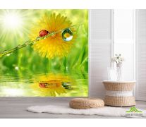 Фотообои божья коровка на листике