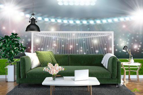 Фотообои Спорт по выгодной цене Фотообои мяч и ворота