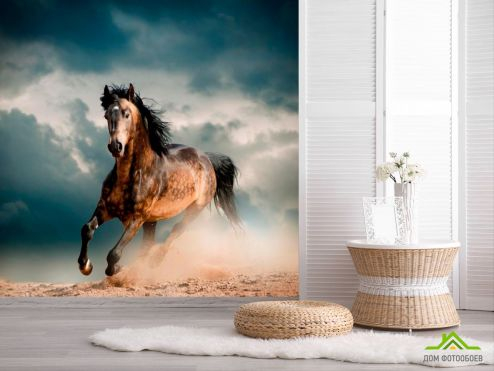 обои Животные Фотообои Бегущая лошадь
