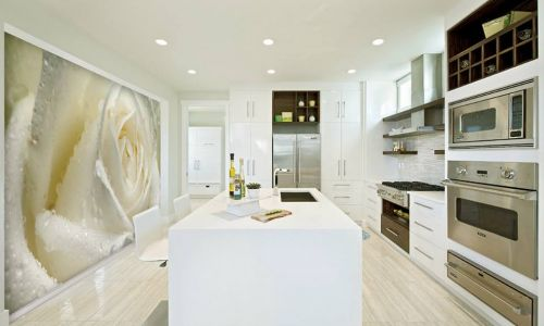 Фотообои в интерьере кухни с фото - Фотообои Роза белая крупным планом
