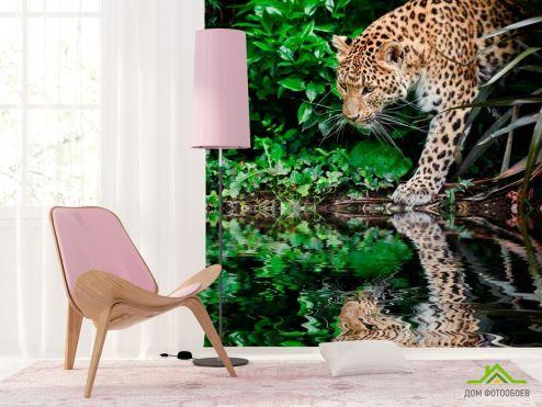 Гепарды Фотообои Гепард у воды