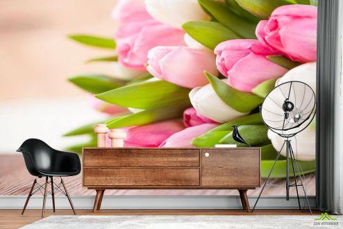 Тюльпаны Фотообои белые и розовые тюльпаны купить