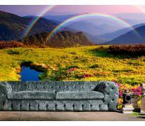 Фотообои Цветное поле, радуга