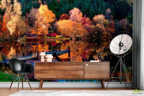 лес Фотообои Под осень, лодка