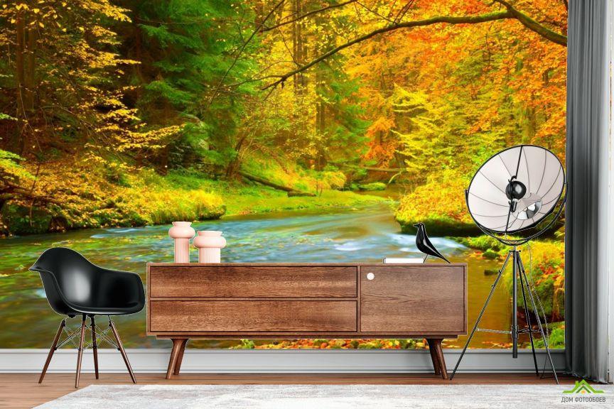 Фотообои яркий осенний лес