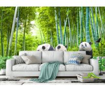 Фотообои Панды в бамбуке