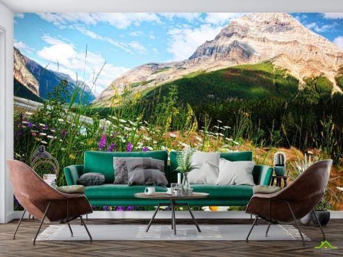 Фотообои Природа по выгодной цене Фотообои Гора, небо, ромашки