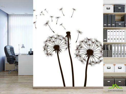 обои Цветы Фотообои Одуванчик